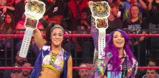 wwe women's tag team titles